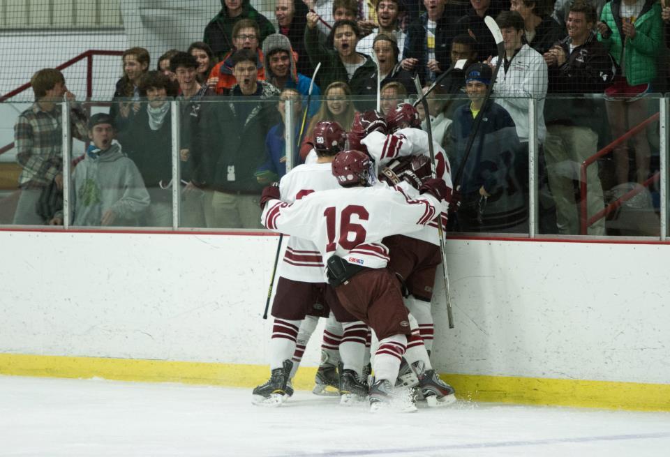 Boys Hockey celebrating a goal Photo by Elise Austin-Washburn