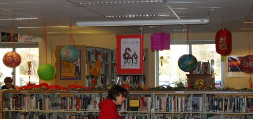 A student studies in the HHS library. courtesy of http://hhs.hanovernorwichschools.org/